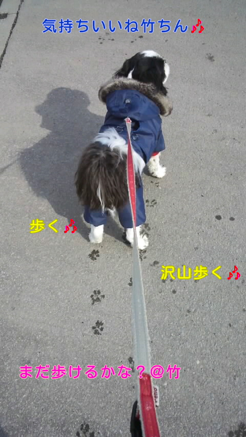 moblog_04a9f435.jpg