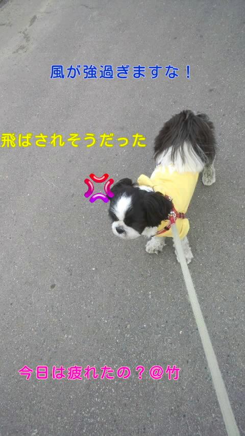 moblog_40748572.jpg