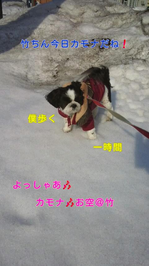 moblog_4964da30.jpg