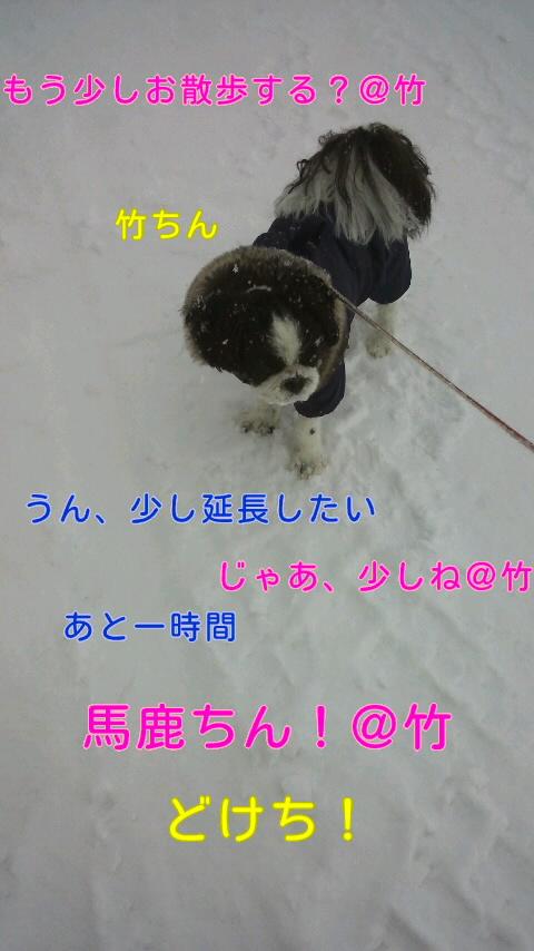moblog_52d01b60.jpg