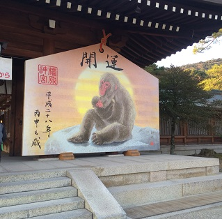 20151231kashiharajingu6.jpg