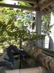 安乗神社06
