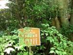 美具久留御魂神社02-25