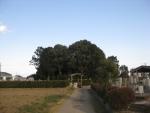 隆子女王の墓09