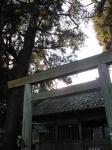 竹神社01-17
