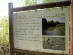 竹神社旧地09