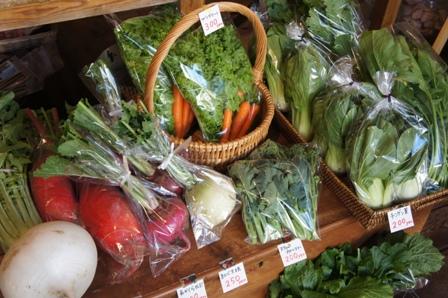 タリトルさん2015冬の野菜