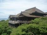 清水寺新緑