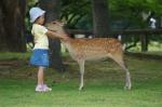 奈良公園鹿と子供