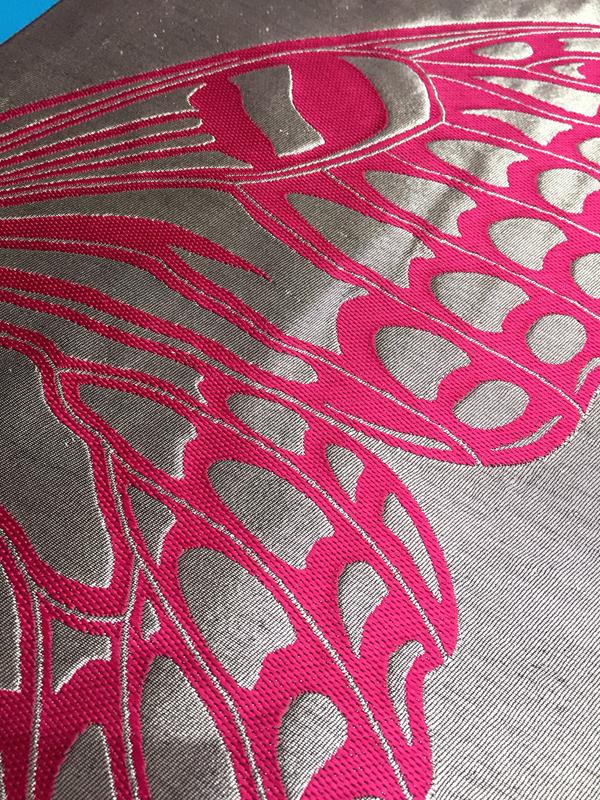butterfly_fukuroobi02.jpg
