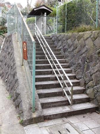 鎌倉山もも公園DSCF3528