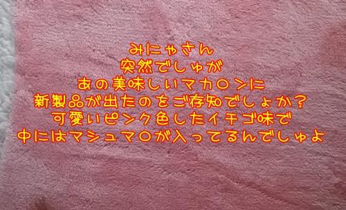 DSC_0380_20160305234616e9d.jpg