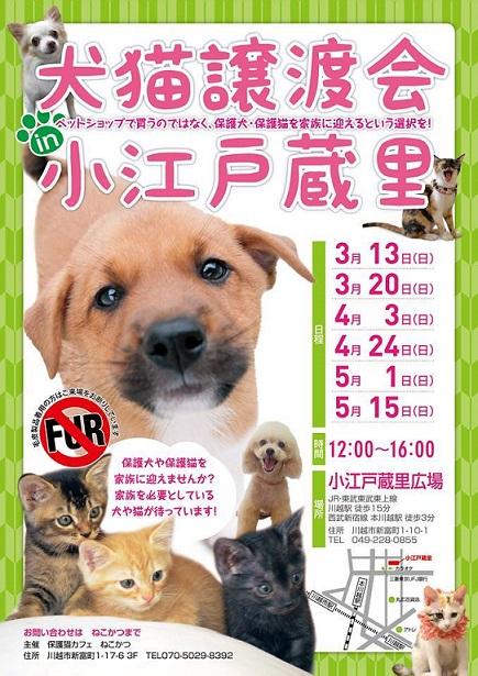 NO FUR 犬猫譲渡会