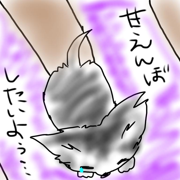 2016031121471022f.jpg