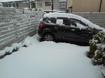 2016年初積雪