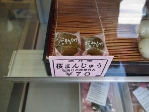 河津桜20