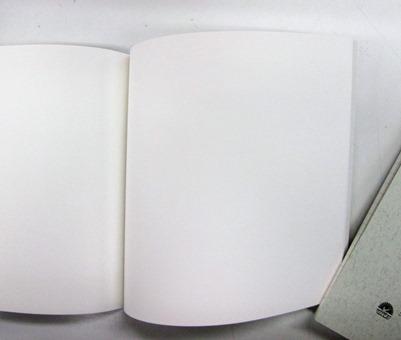 ツバメむーみんヌーピー (6)