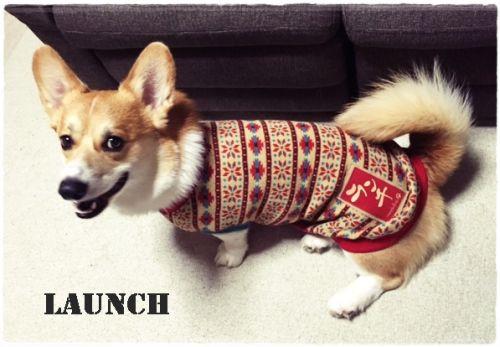 Launcher1.jpg