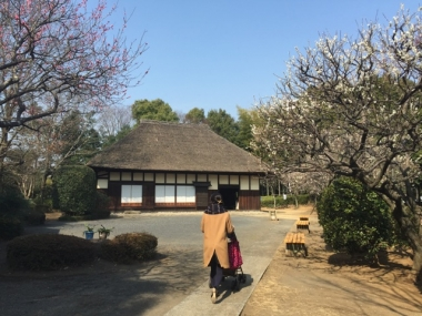 piyoko20160304-5.jpg