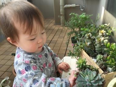 piyoko20160331-8.jpg