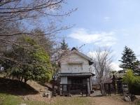 3月26日 蔵座敷とロケセットの間の桜
