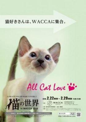 猫の世界 in WACCA2