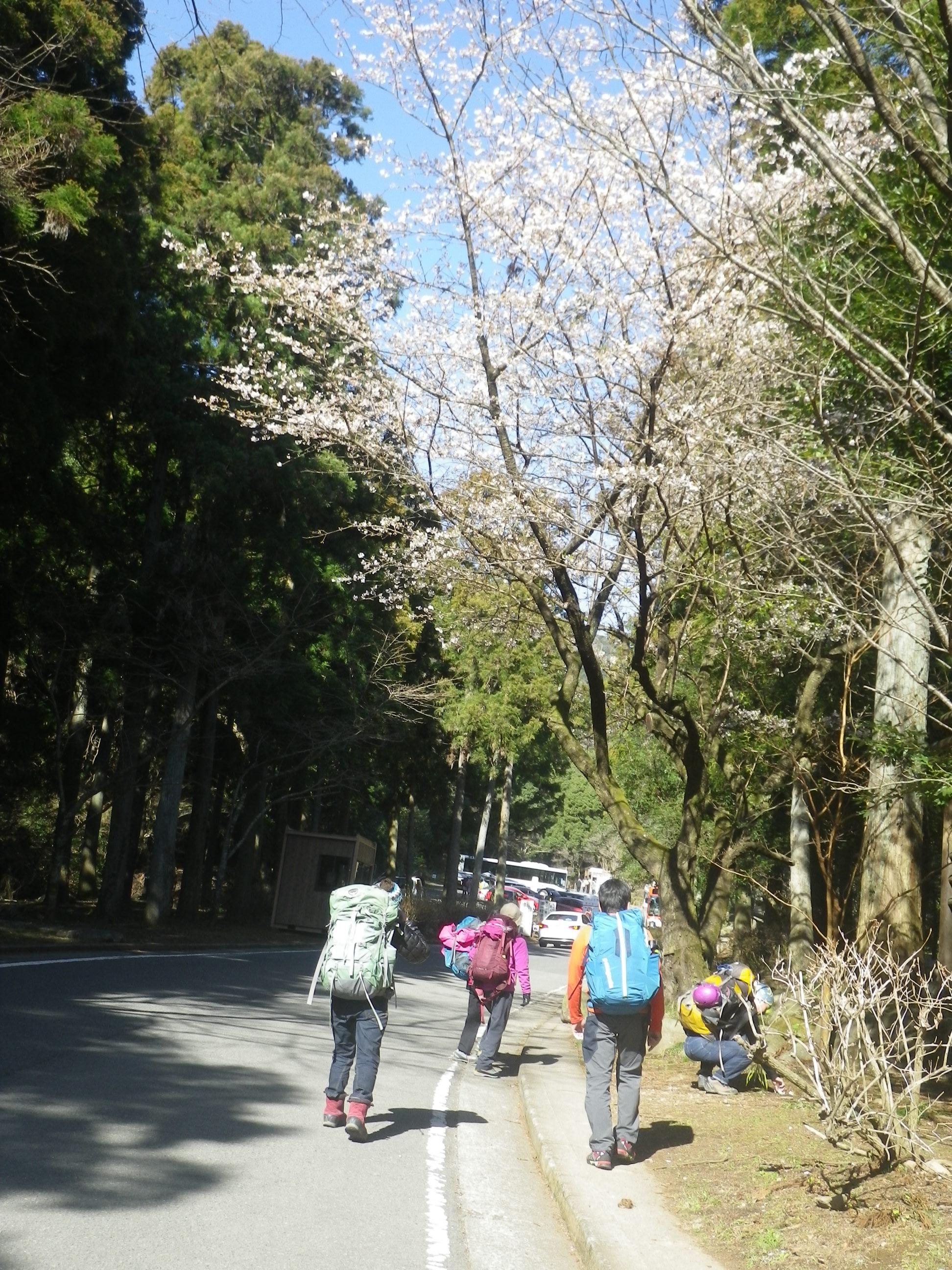 クラブ 桃源郷