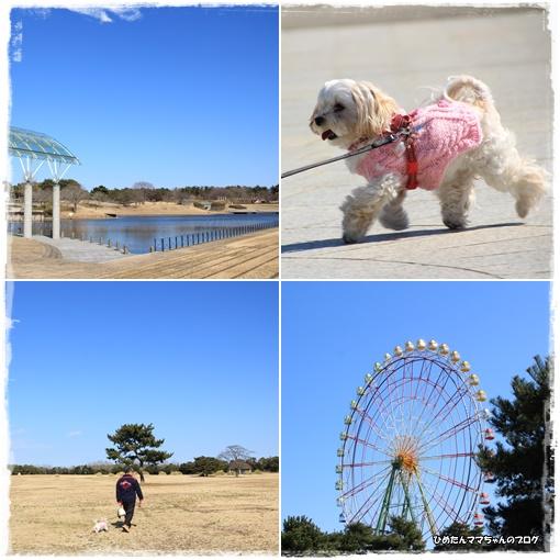 大きな公園散歩♪