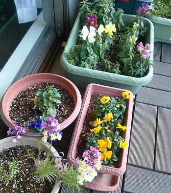 gardening632.jpg