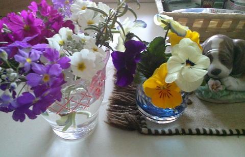 gardening645.jpg