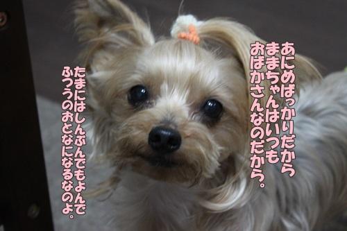 IMG_72980.jpg
