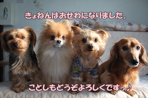 IMG_754600.jpg