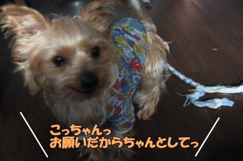IMG_754800.jpg
