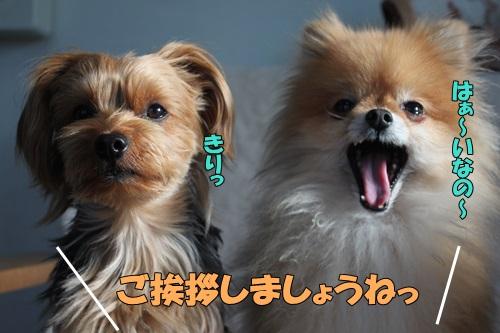 IMG_755300.jpg