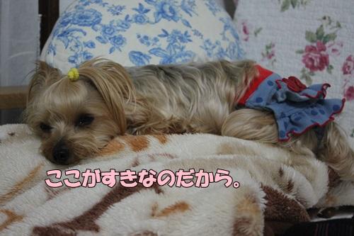 IMG_760600.jpg