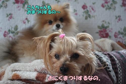 IMG_763600.jpg