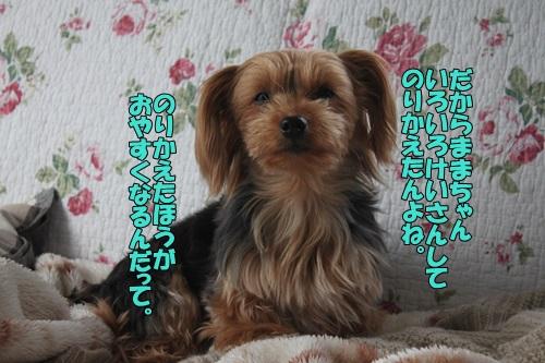 IMG_765700.jpg