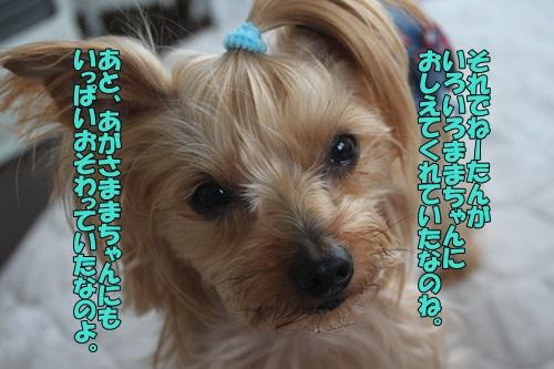 IMG_766200.jpg