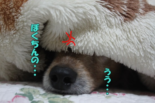 IMG_766700.jpg
