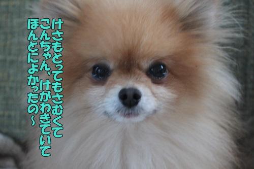 IMG_769200.jpg