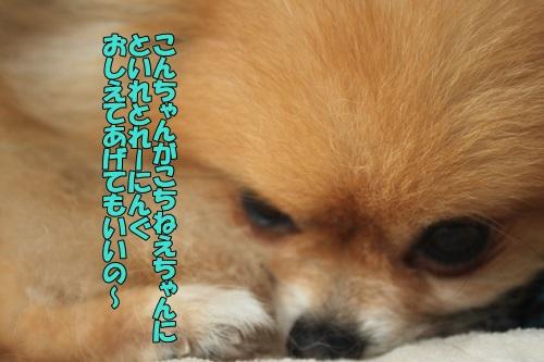 IMG_796400.jpg