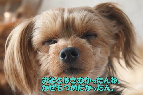 IMG_797700.jpg