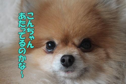 IMG_800900.jpg