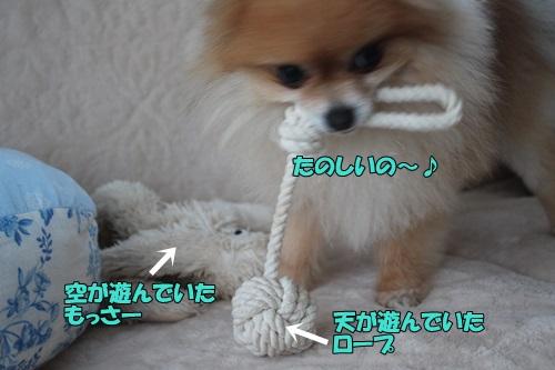 IMG_805400.jpg