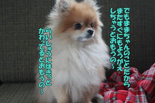 IMG_818500.jpg