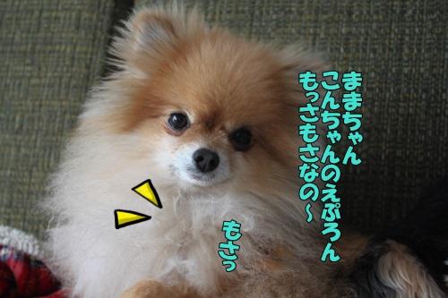 IMG_819000.jpg
