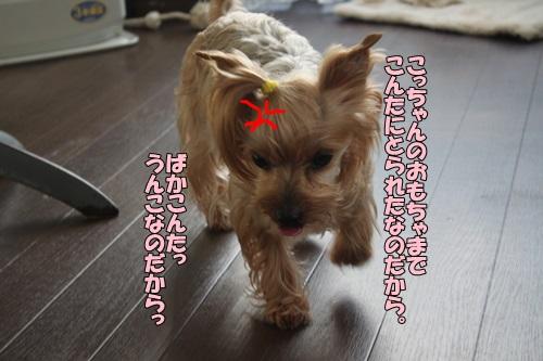 IMG_822300.jpg