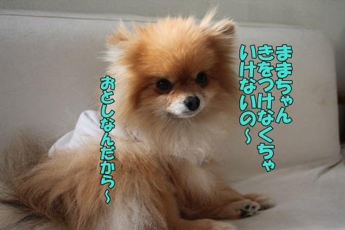 IMG_836700.jpg