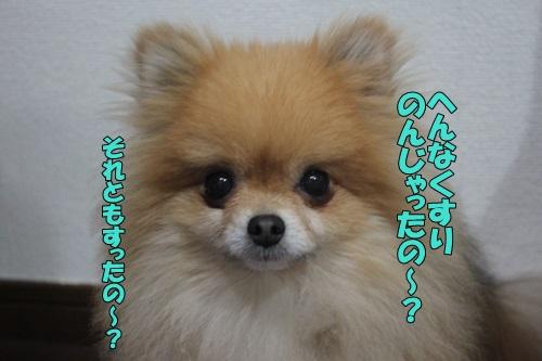 IMG_839700.jpg