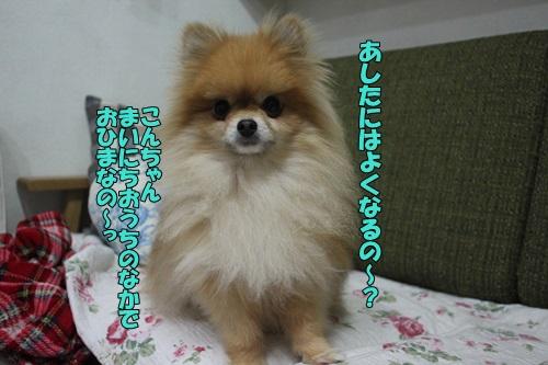 IMG_840700.jpg